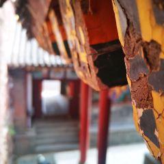 龍泉寺用戶圖片