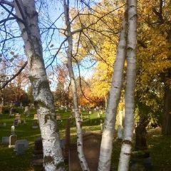 Cataraqui Cemetery User Photo