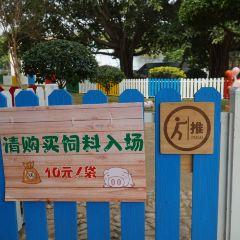 Green Sun Ecotourism Resort User Photo