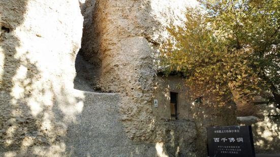 非常值得一去的景点,虽然开放的洞窟不多,规模也跟莫高窟没法比