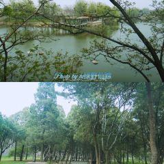 천하제일관 여행 사진