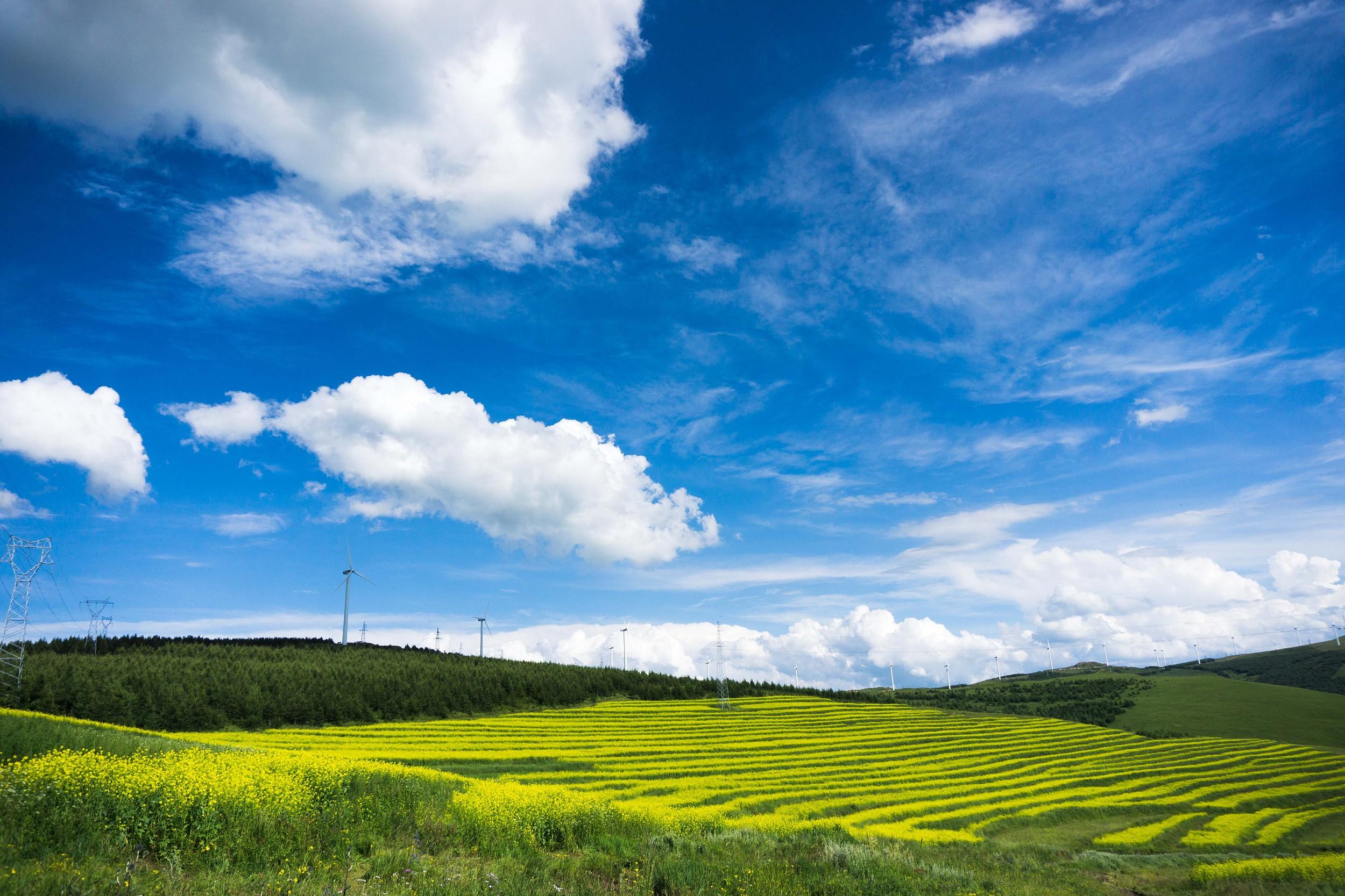 Zhangbei Zhongdu Grasslands