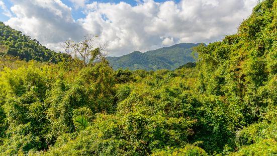 Sanya Tropical Rainforest Square