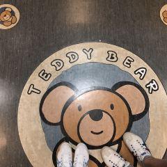 泰迪熊博物館用戶圖片