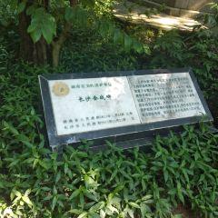 Changshahuizhan Monument User Photo