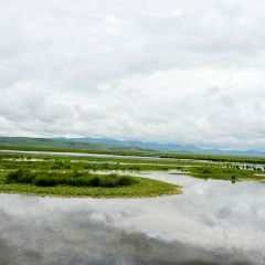 Zoige Flower Lake User Photo