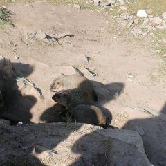 Dazong Lake User Photo