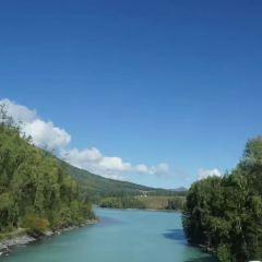 喀納斯河用戶圖片