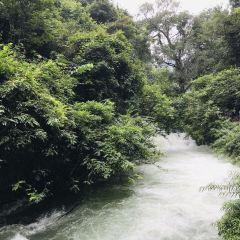 水上森林上段用戶圖片