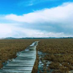 Riganqiao Everglades User Photo