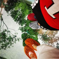 Tongshi Ridge User Photo
