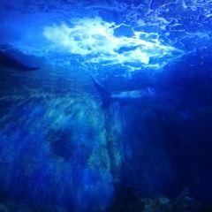 Xiamen Underwater World User Photo