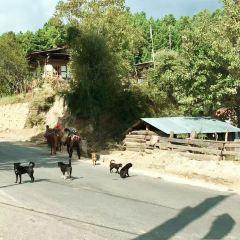 Shenqinlangzha Mounatin User Photo