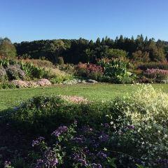 奧克蘭植物園用戶圖片
