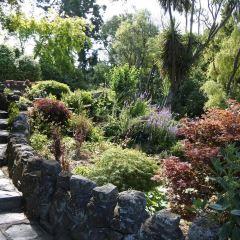 世紀湖植物園用戶圖片