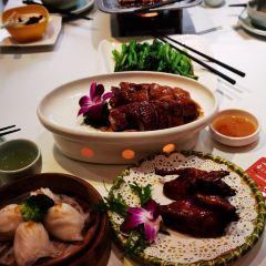 Zhuo Yue Xuan User Photo
