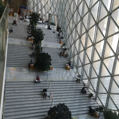 Shenzhen Library User Photo