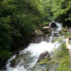 Shenglongjia International Ecotourism Resort 여행 사진