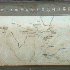 古格王國遺址用戶圖片