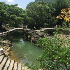 With Dragon Bridge User Photo