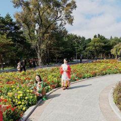 Yanji Park User Photo