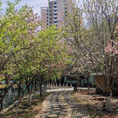 Flower Garden (West Gate) User Photo