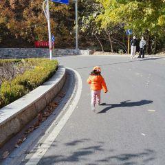 尼亞加拉湖濱鎮用戶圖片