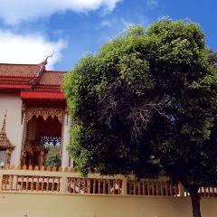 芭東寺用戶圖片