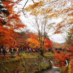가루이자와마치 여행 사진