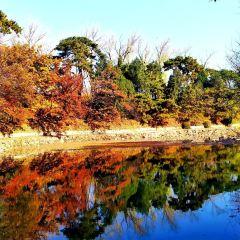 頤和園用戶圖片
