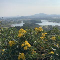 香山景區用戶圖片