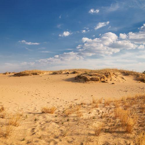 타민차깐사막