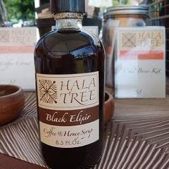 Hala Tree User Photo