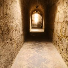 巴勒莫嘉布遺修院地下墓室用戶圖片