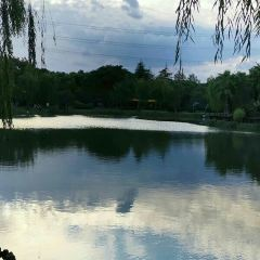 Huaxia Culture Park User Photo