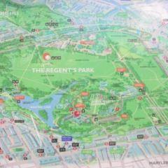 攝政公園用戶圖片