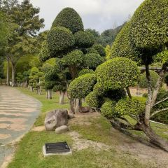 Perdana Botanical Garden User Photo