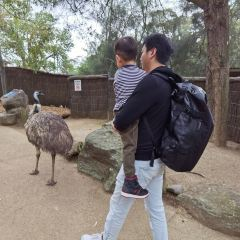 Taronga Zoo User Photo