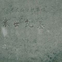 Yuanshikai Mu User Photo