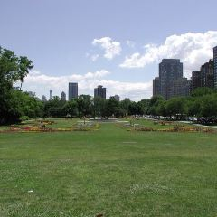 Lincoln Park User Photo