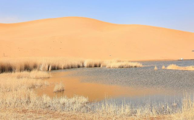 바단지린사막