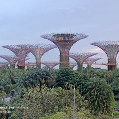 Gardens by the Bay User Photo