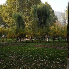 Yuannan Park User Photo