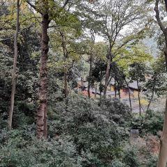 Tongde Park (South Gate) User Photo