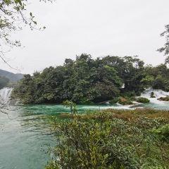 Detian Old Kapok Scenic Area User Photo