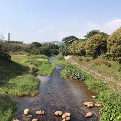 Bijiashan Park User Photo