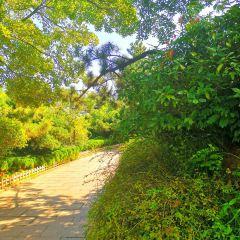 Signal Hill Park User Photo