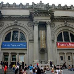大都會藝術博物館用戶圖片