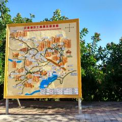Yuanmou Earth and Forest Scenic Resort User Photo