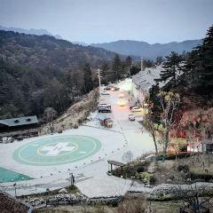 桃花沖森林公園用戶圖片